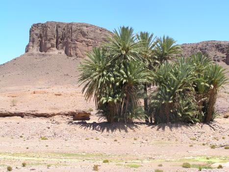 morocco-179